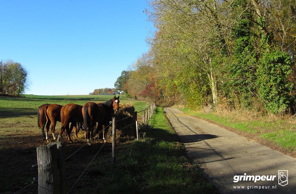 beklimming van de Hagendoornweg
