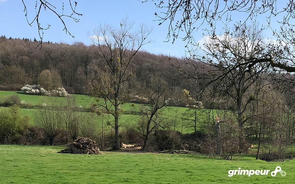 De beklimming van de Groenendalsberg